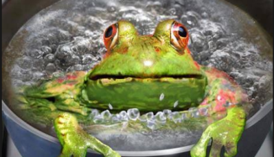 Image result for boiled frog syndrome psychology